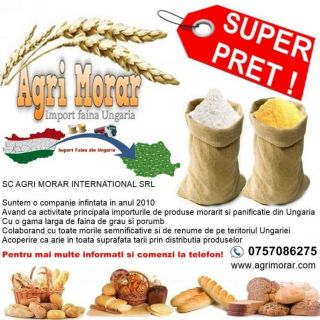 vindem faina import ungaria